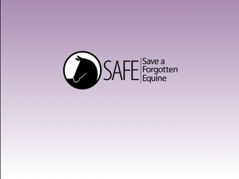 equicube-sponsor-for-safe-save-a-forgotten-equine