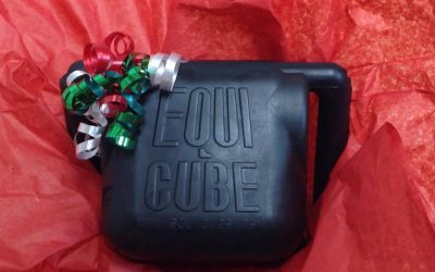 Purchase an Equicube for the Holiday Season